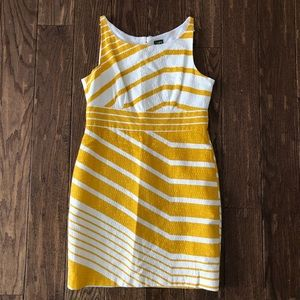 Taylor dress size 12